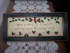 "Primitive Stitchery with Buttons and Primitive Wooden Frame ""Having a friend is a comfort that can never be taken away."""